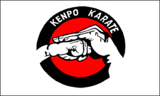 """New listing """"Kenpo Karate"""" 3x5 ft flag polyester"""