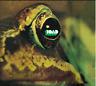 """Toad:  """"S/T"""" + bonustracks (Digipak CD Reissue)"""