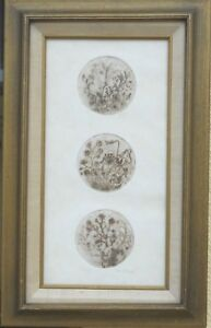 """Artist Proof Etching By R.CLARK, Signed, 8"""" x 15"""" Inches,rare"""