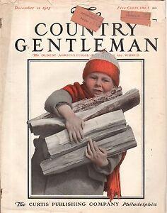1915 Country Gentleman December 11-White Wyandotte Chickens; Texas Panhandle
