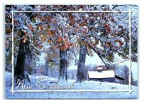 Postcard Early Fall Snow in New England Maine ME MS NES8B