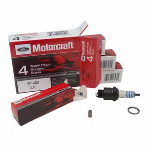Spark Plug-OHV, 2BBL MOTORCRAFT SP-480