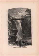 WATKINS GLEN, Mountain House, antique engraving, original 1890
