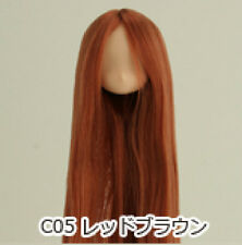 Obitsu Doll 11cm hair implantation head for natural body (11HD-F01NC05) R BRN