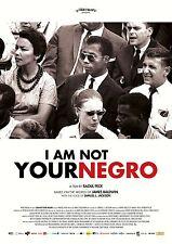 I Am Not Your Negro Movie Poster (24x36) - Samuel L. Jackson, James Baldwin v2