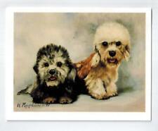 Dandie Dinmont Terrier Pair Notecards 6 Note Cards & 6 Envelopes Ruth Maystead
