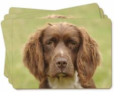 Springer Spaniel /'Unconditional Love/' Picture Placemats in Gift Box AD-SS1uP