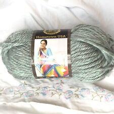 New ListingLion Brand Hometown Usa acrylic yarn Fayetteville Frost #226 dye# 64033