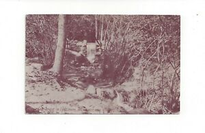 Brook in Lake Park Milwaukee Wisconsin Postcard Acmegraph Co. Chicago from 1911