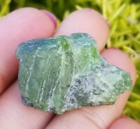 30ct Natural Tremolite Crystal Gem Grade, Rare Bottle Green Tanzania, US Seller