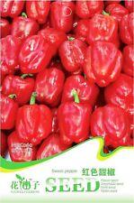1 Pack 8 Bell Peper Seeds Capsicum Annuum Red Sweet Pepper Garden Vegetable C060