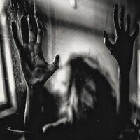 BEHIND THE SHADOW DROPS - HARMONIC   CD NEW