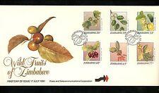 Postal History Zimbabwe FDC #642-647 Wild fruits food 1991