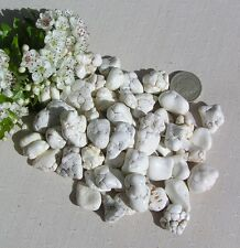 12 Stunning Natural White Magnesite Crystal Nuggets/Tumblestones