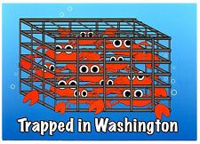 Trapped in Washington Crab Trap Humor Postcard Funny New Crabbing Fisherman