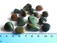 50.47g TUMBLED BLOODSTONE from INDIA  AAA 15-20mm ;Metaphysical; Healing; (#16))