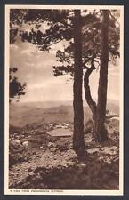 CYPRUS MANGOIAN A VIEW FROM PRODHROMOS  TROODOS  BLACK PINE MINT POSTCARD C.1940