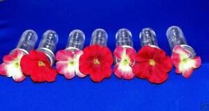 7  Hummingbird Feeder Replacement Tubes Silk Geranium Flowers