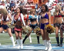 "2006 Pro Bowl NFL Football Cheerleaders 8""x 10"" Photo 2"