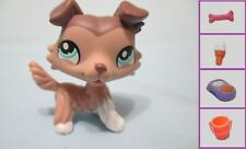 Littlest Pet Shop Dog Collie Purple Tan Brown 1330 and Free Accessory Authentic