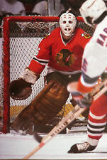 NOSTALGIA HOCKEY PRINT PHOTO TONY ESPOSITO GOALIE CHICAGO BLACK HAWKS    TE17