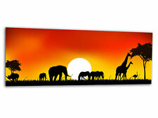 Glas-Bild Wandbild AFRIKA TIERE AG-00263 125 x 50cm