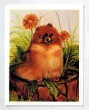 New Red Pomeranian Sitting Notecards 6 Note Cards 6 Envelopes Ruth Maystead Pom7