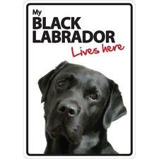 Black Labrador Lives Here A5 Plastic Sign
