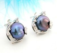 New 11-12MM Black Freshwater Cultured Pearl Silver Stud Earring AAA