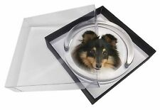 Tri-Colour Shetland Sheepdog Glass Paperweight in Gift Box Christmas P, AD-SE2PW