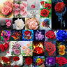 DIY 5D Rose Flower Diamond Painting Embroidery Cross Craft Stitch Kit Home Decor