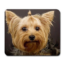 Yorkie puppy Large Mousepad Mouse Pad Great Gift Idea