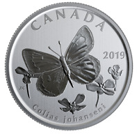 Canada 50 cents coin, Wildlife Treasury & Fauna, Arctic Butterfly, UNC, 2019