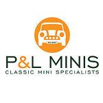P&L Minis