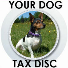 YOUR DOG CAT PET PICTURE ON A CAR TAX DISC HOLDER PARKING PERMIT HOLDER