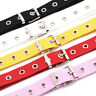 Studded Grommet Holes Canvas Belt Buckle Eyelet Stud Women Fashion Waistband  sp