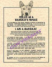 Rules In A Basenji's House
