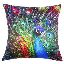 Peacock Vibrant Bright Feather Accent Decorative Throw Pillow Dorm Home Decor