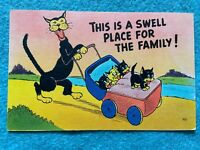 This is a swell place for the family Vintage Postcard