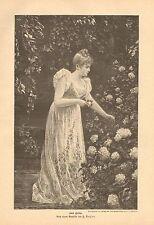 Pretty German Girl, Cutting Flowers In Her Garden, Vintage 1893 Antique Print