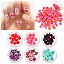 3D Nail Art Decoration Little Resin Flower Mixed Size Floral Rose Pattern DIY