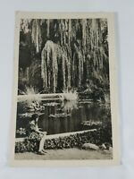Vintage Foreign Real Photo Post Card Girl At Pond Undivided Back 1960 Hungary