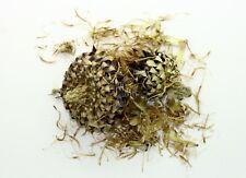 Greek Milk Thistle Flowers Loose Herbal Tea 300g-2kg - Silybum Marianum