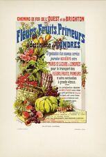 """""""FLEURS,FRUITS,PRIMEURS"""" Planche originale entoilée Litho FRAIPONT 1890 26x35cm"""