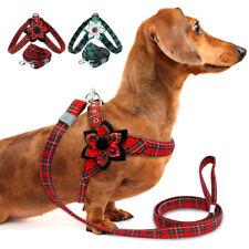 Cute Big Flower Small Dog Harness and Lead Set for Schnauzer Dachshund Beagle