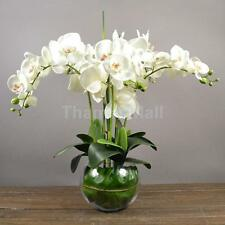 Artificial Orchid Phalaenopsis Real Touch Flower 12 Heads Room Decor White