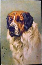 St. Bernard dog 1930 postcard by artist Arthur Wardle publisher, Stehli Freres