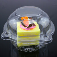 20pc Clear Plastic Single Cup Cake Muffin Case Pods Domes Boxes hold Portable