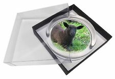 Black Lamb Glass Paperweight in Gift Box Christmas Present, ASH-8PW