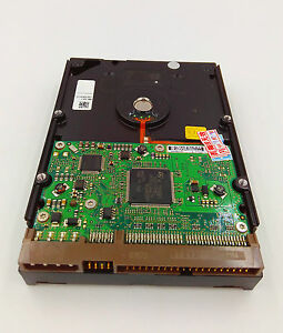 "Seagate SV35.2 500GB,Internal,7200 RPM,3.5"" (ST3500630AV) IDE PATA Hard Drive"